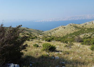 Croazia Quaglie - veduta
