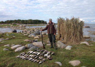 Estonia Anatre un bel carniere di anatre