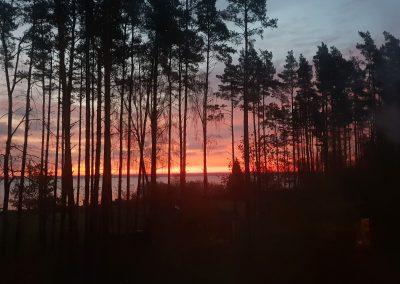 Estonia Beccacce e Anatre - Alba meravigliosa