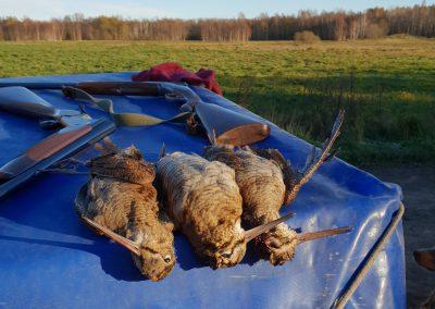 Estonia becccacce - foto ricordo di una mattina