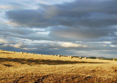 Scozia paesaggi mozzafiato